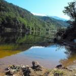 dushantsi dam - coast forest