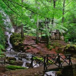teteven waterfall skoka - the forest trek