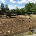 city-of-sofia-zoo-02