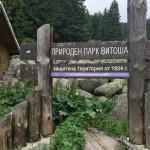 aleko-hut-vitosha-mountain-03