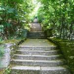 Madara park - stairs through the park