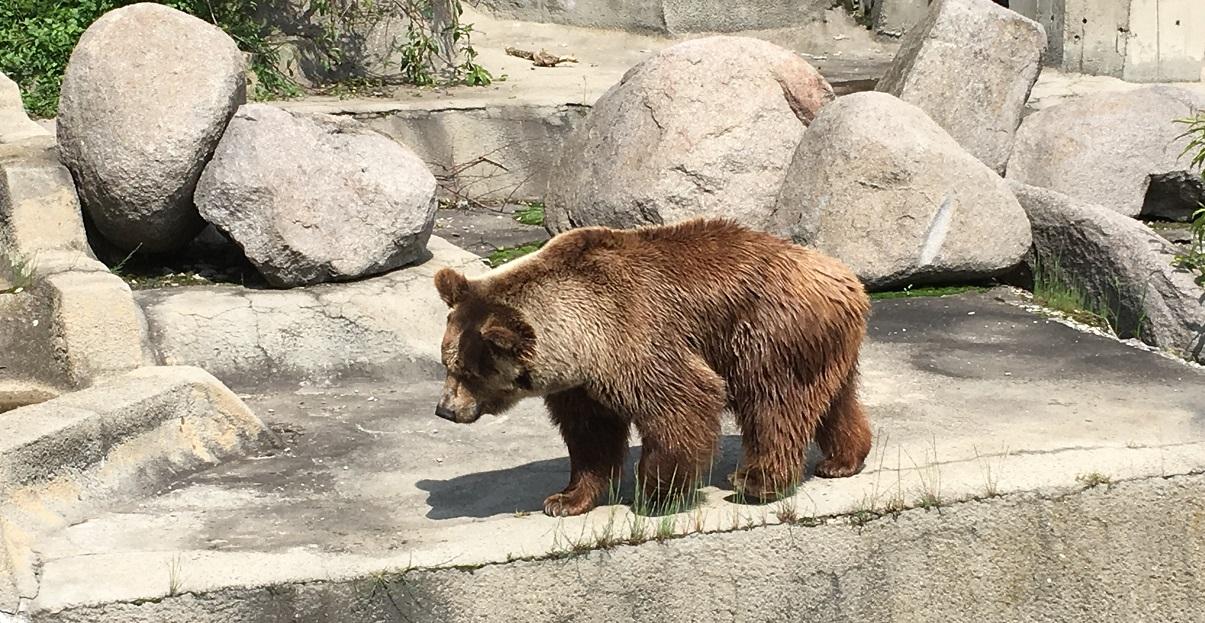 Зоологическа градина – София